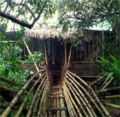 Ngôi làng sạch nhất thế giới - Nơi phụ nữ làm chủ