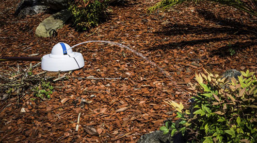 Robot Droplet tự động tưới nước phù hợp với từng giống cây