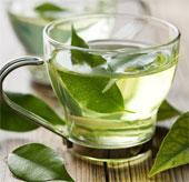 Khoa học chứng minh trà xanh giúp tăng cường trí nhớ