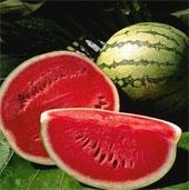 Lý do bạn nên ăn dưa hấu trong mùa này