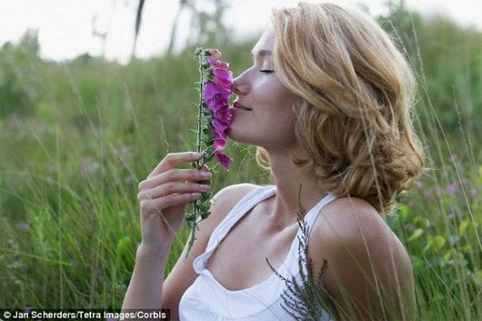 Mùi hương khiến con người hồi tưởng lại kí ức