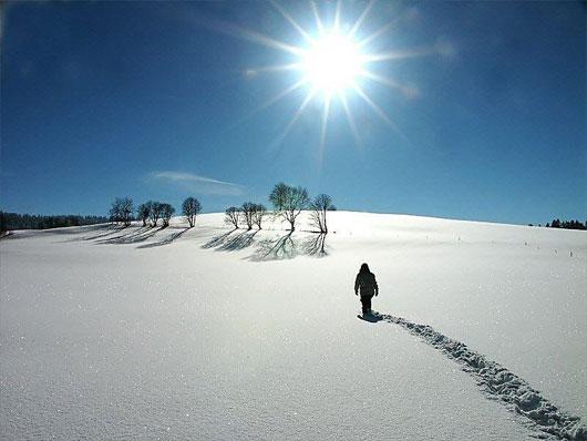 Sự kỳ diệu từ bước đi