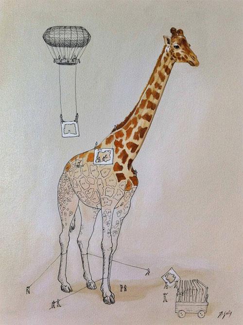 Giải thích vui: Điều hiển nhiên của động vật nhưng chẳng ai biết