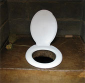 Công việc tồi tệ nhất thế giới: Thẩm định mùi nhà vệ sinh