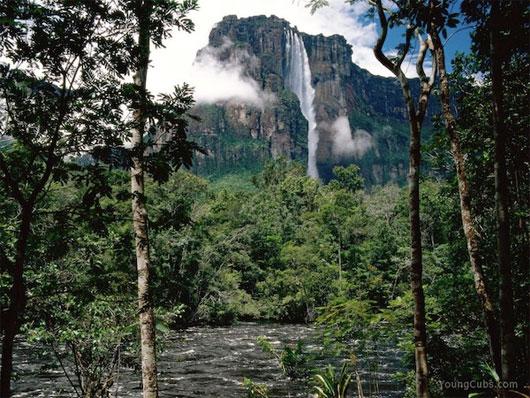 """Rừng tự nhiên Amazon đẹp đến """"mê hồn"""""""