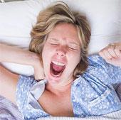 Ngáp có thể do não quá nóng
