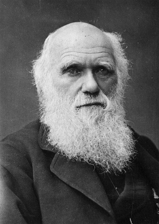 """Charles Darwin - một """"cú đêm"""" đích thực"""