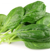 Tại sao nên ăn nhiều cải bó xôi?