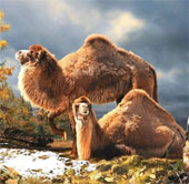 Hóa thạch khồng lồ và sự đáng sợ của sinh vật thời tiền sử