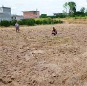 Hạn hán ở Tây Ban Nha nghiêm trọng nhất trong 150 năm
