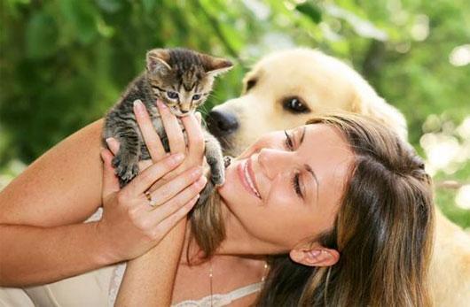 Người nuôi mèo thông minh hơn nuôi chó?