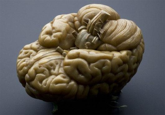 """Điều gì sẽ xảy ra nếu """"kích điện"""" vào bộ não chết"""