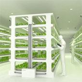 Hãng điện tử đi trồng rau