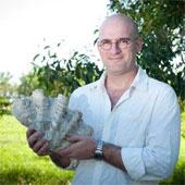 Phát hiện loài sò khổng lồ mới sinh sống tại Australia