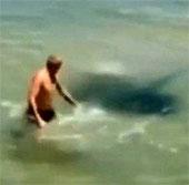 Video: Suýt mất mạng vì đùa nghịch với cá đuối gai độc