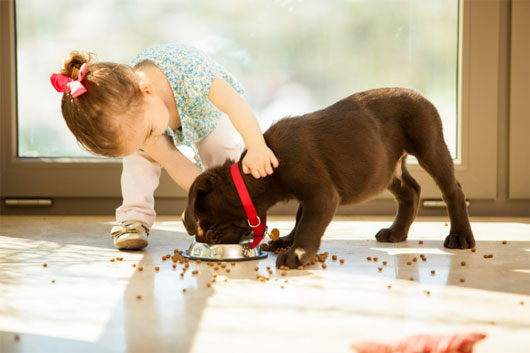 Trẻ dưới 1 tuổi tiếp xúc với chất gây dị ứng sẽ giảm nguy cơ bị hen suyễn
