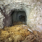 Phát hiện lăng mộ Pharaoh gần 4000 năm ở Ai Cập