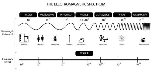 Lò vi sóng hoạt động như thế nào?