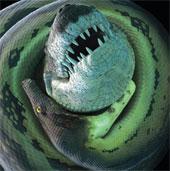 Cá sấu khổng lồ tiền sử