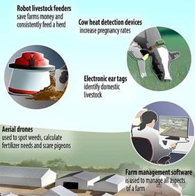 Mô hình trang trại công nghệ cao tại Anh