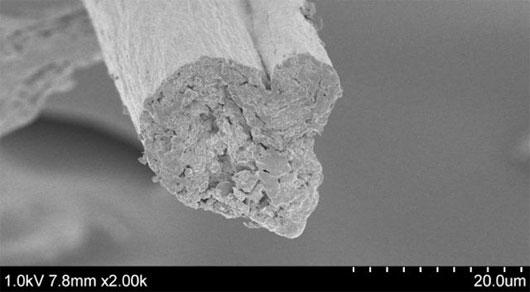 Sợi tiêu huỷ sinh học cứng như thép làm bằng cellulose từ gỗ