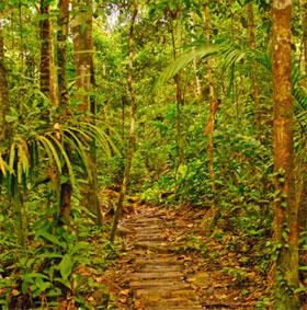 Miền Tây Amazon bị đe dọa do ô nhiễm bởi dầu