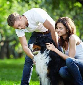 """Nghiên cứu cho thấy tính cách """"khó ưa"""" ở những người yêu chó"""