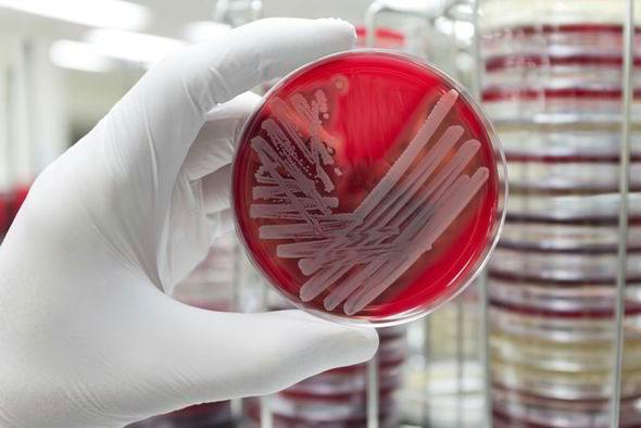 Đột phá mới trong cuộc chiến chống kháng thuốc