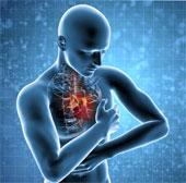 Lý giải cơ chế căng thẳng dẫn đến đau tim và đột quỵ