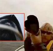 Video: Cá voi xanh đội cả thuyền nhô lên mặt nước