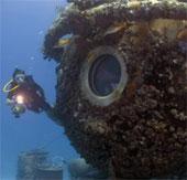 Video: Hành trình 31 ngày dưới đại dương