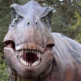 Bạn có thể sống sót trước một con T-Rex bằng cách đứng im?