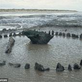 Bí ẩn vòng gỗ trên bờ biển