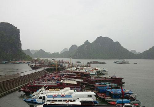 Bão Rammasun bắt đầu ảnh hưởng Quảng Ninh