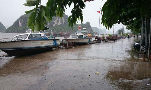 (Trực tiếp) Bão Rammasun đang ảnh hưởng đến Quảng Ninh
