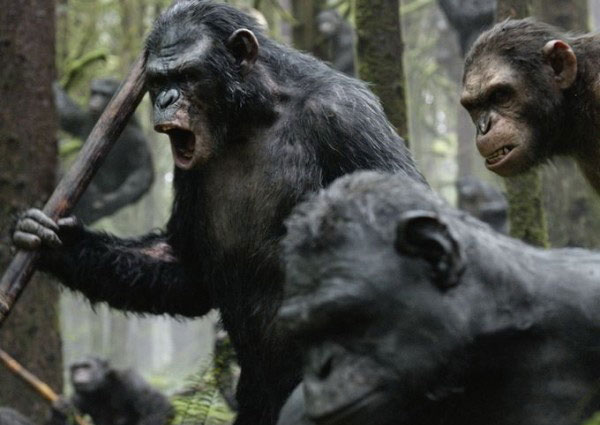 Loài sinh vật nào đang thống trị Trái đất?