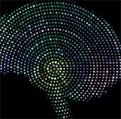 Mỹ phát triển chip cấy trong não người