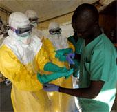 Bộ Y tế khuyến cáo phòng dịch sốt xuất huyết Ebola