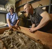 Tái phát hiện bộ hài cốt 6.500 năm tuổi