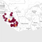 Dịch Ebola đã lan nhanh như thế nào?