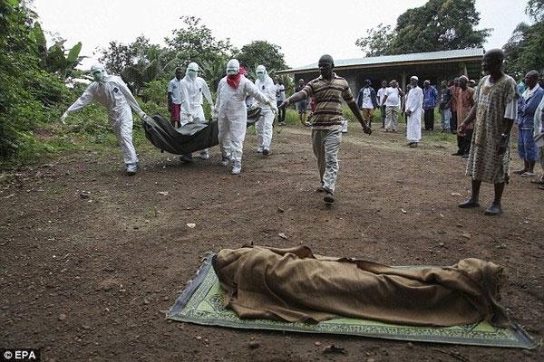 Hành trình virus Ebola phá hoại cơ thể người trong bộ hình ám ảnh