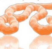 Cách virus Ebola tấn công cơ thể con người
