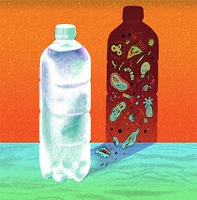 Uống nước để lâu có hại cho sức khỏe hay không?