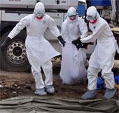 WHO: Sự hoành hành của dịch Ebola đang bị đánh giá thấp