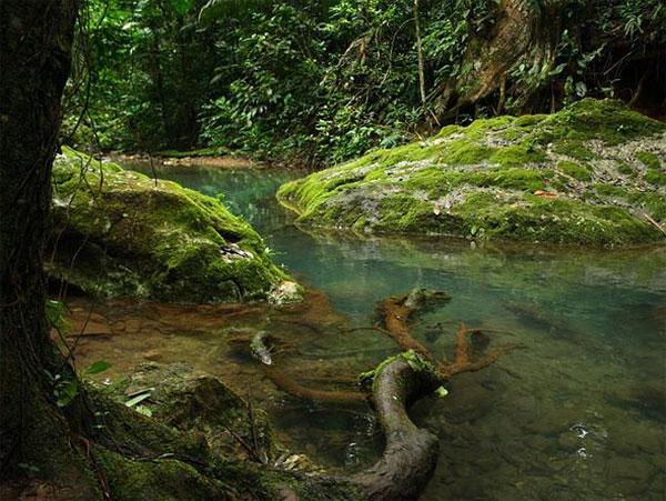 Bên trong hang tế thần của người Maya