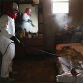Chùm ảnh minh chứng sự khó khăn trong việc kiểm soát virus Ebola