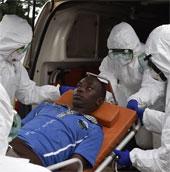 Thử nghiệm thành công thuốc điều trị Ebola trên khỉ đuôi ngắn