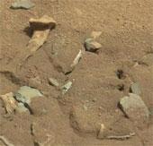 NASA lý giải về hình ảnh giống xương người trên sao Hỏa