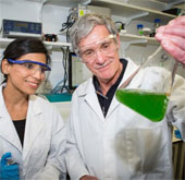 Tạo ra nhiên liệu xanh nhờ quang hợp