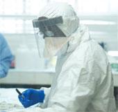 Phát hiện manh mối di truyền về sự bùng phát dịch Ebola